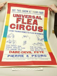 1953.9.28 Poster advertising the Universal Flea Circus at St Giles Fair in 1953