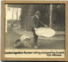 1903.44.2 Photo showing man using same winnowing basket, purchased from Francis Darwin
